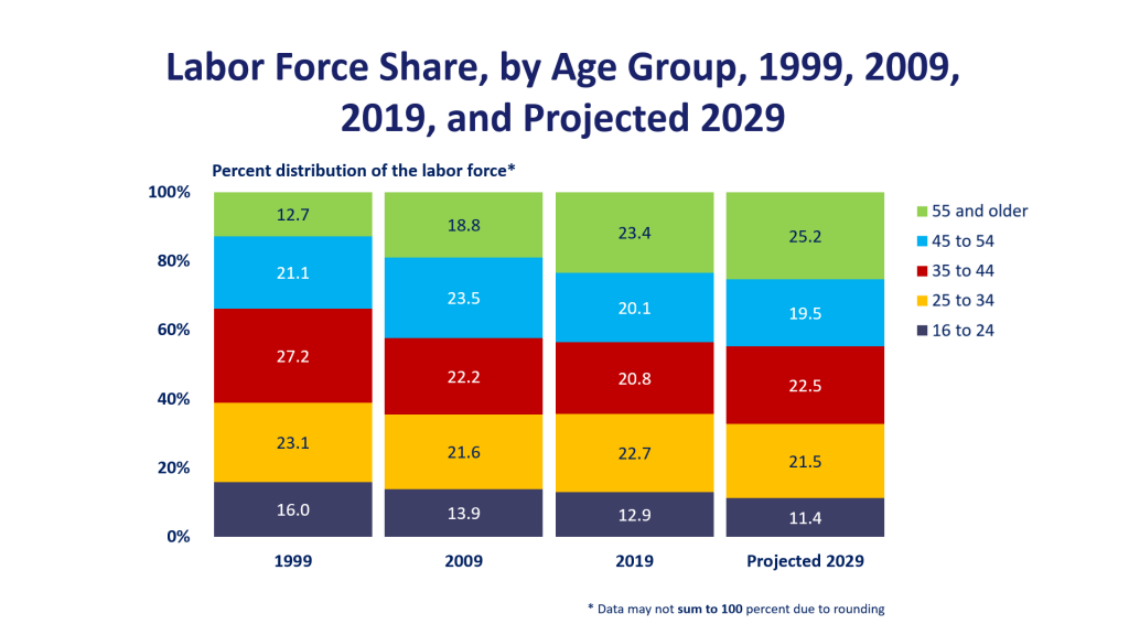 The US Bureau of Labour Statistics - Labour Share by Age Group up to 2029